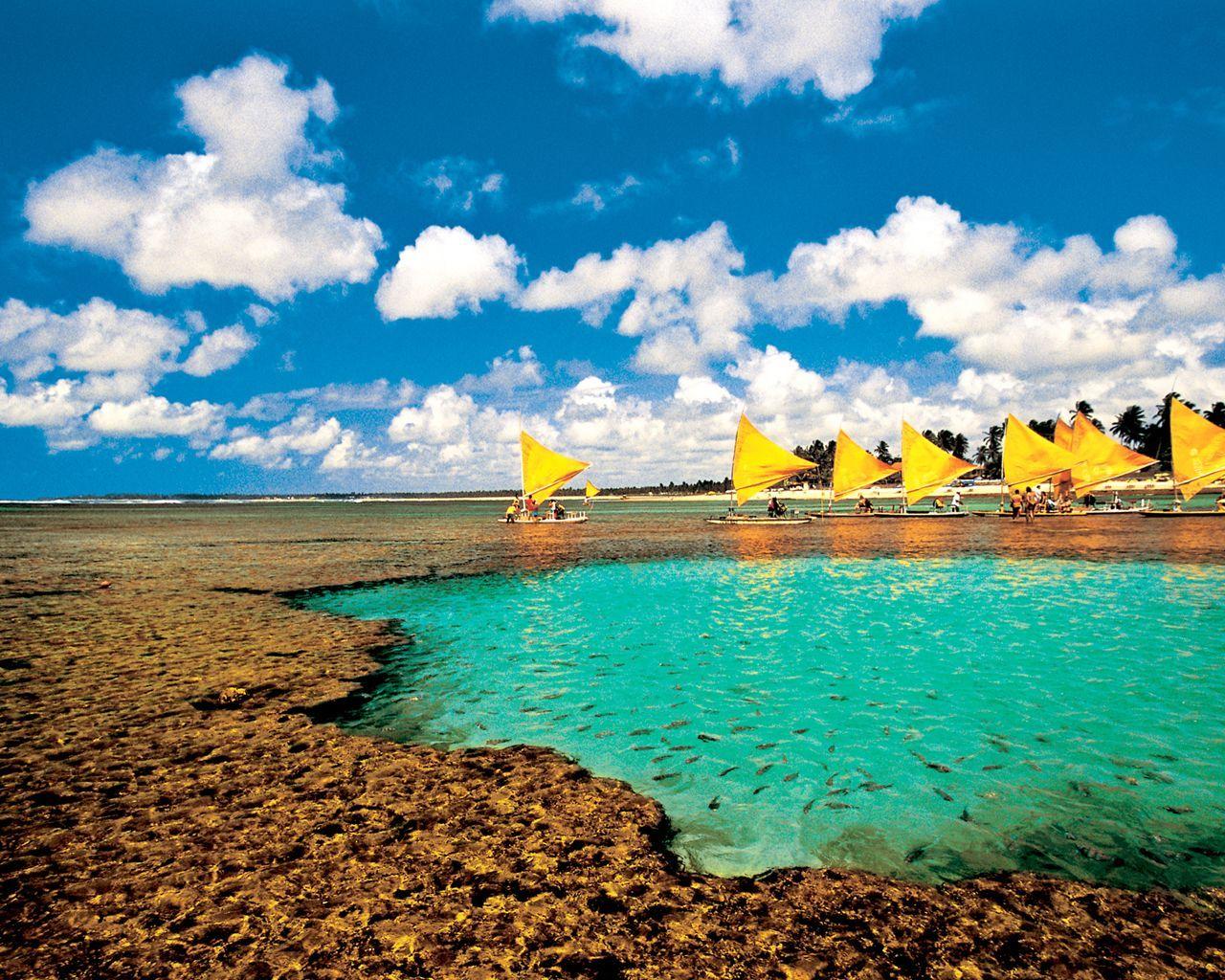 Conhecer menina lodade Canary Islands-6786