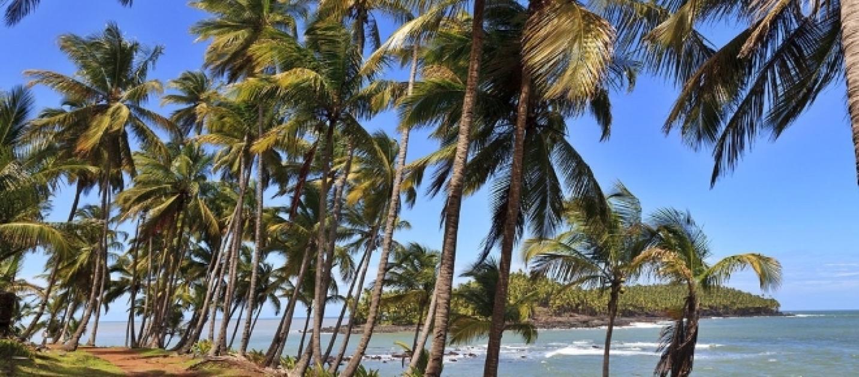 Madura procurando em French Guiana-2223
