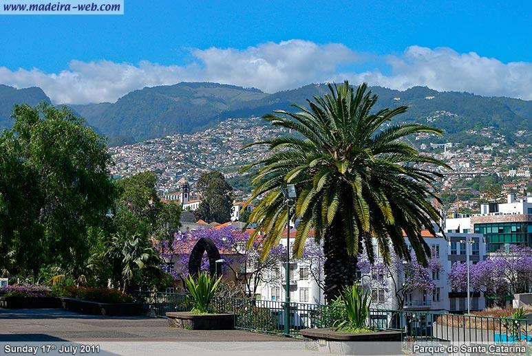 Senoras procurando amante em Funchal-4620