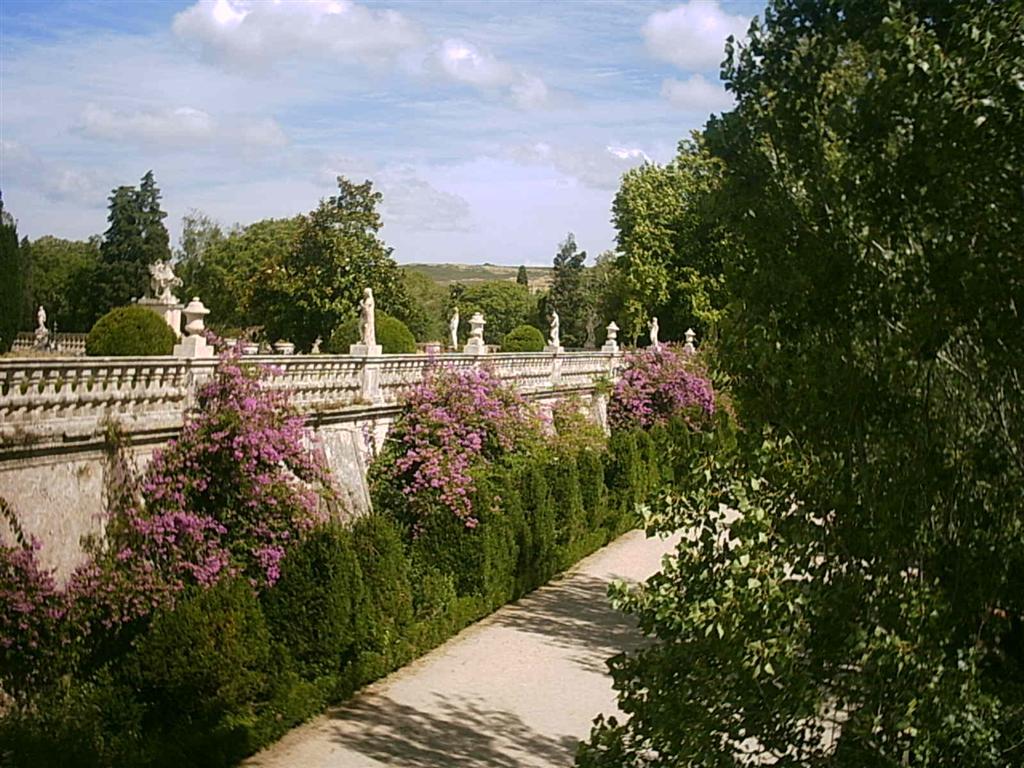 Uncio as s casa e jardim Queluz-4373